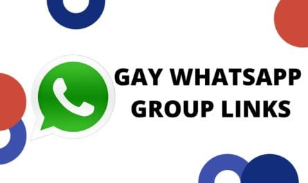 Whatsapp Groups - Join 180+ Gay whatsapp Group Links 2020 {Updated} - 18+ Gay Whatsapp Groups Link To Join