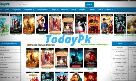 Todaypk 2020: Todaypk Watch And Download Latest Bollywood, Telugu HD Movies Illegally, Todaypk online Movies Website